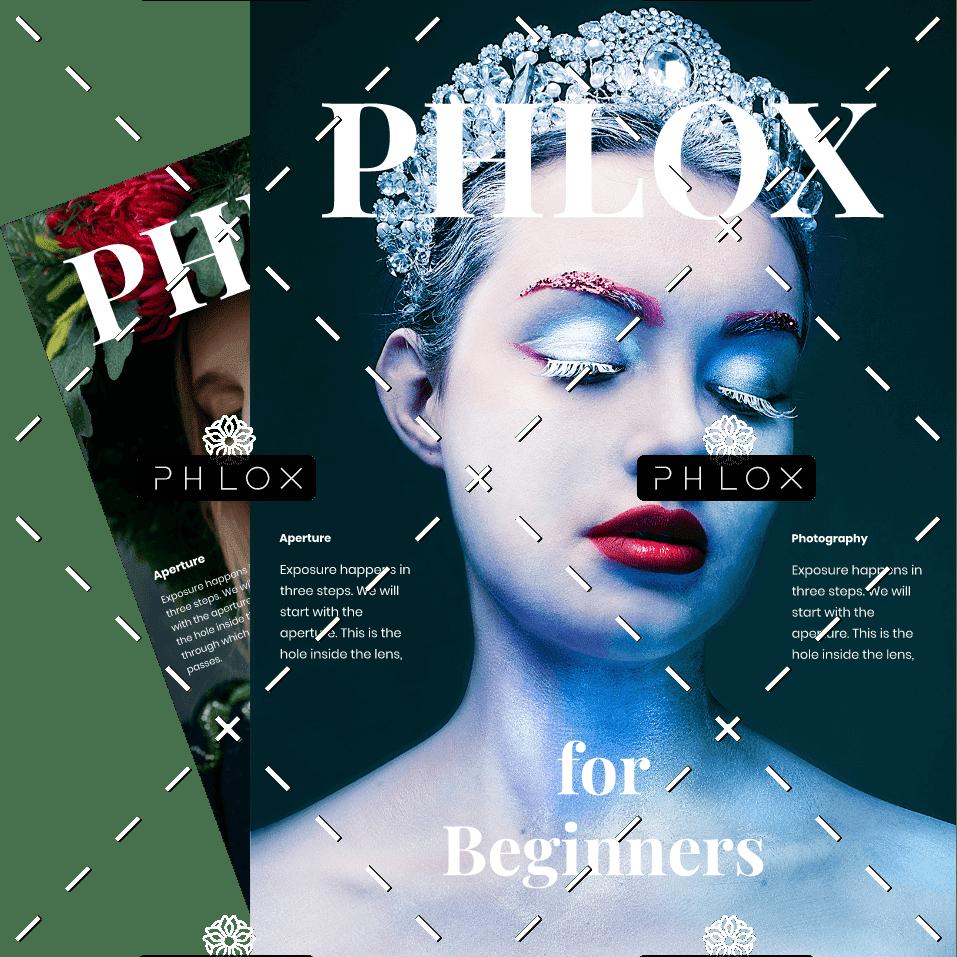 demo-attachment-600-phlox_mag
